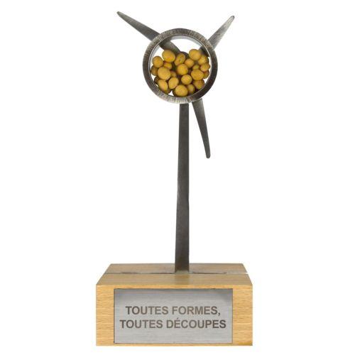 Trophée SALSA  personnalisé montpellier Paris Ile de France