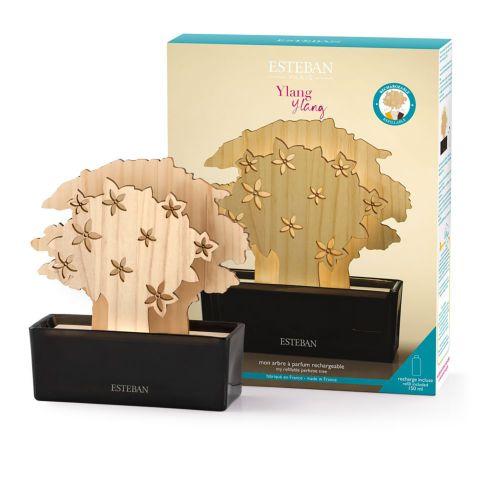 Ylang-Ylang Mon arbre à parfum