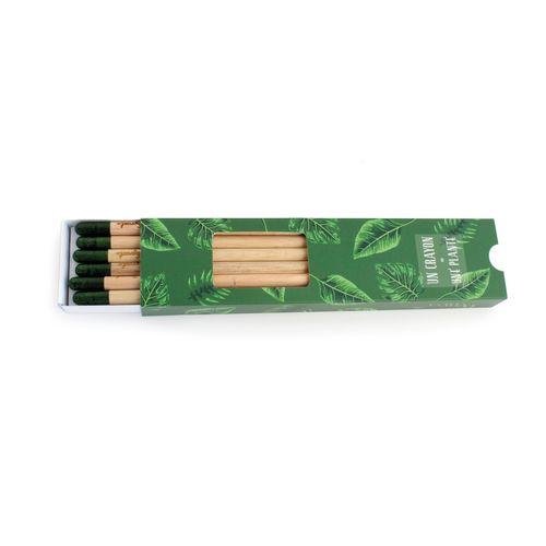Coffret Crayon à graines couleur