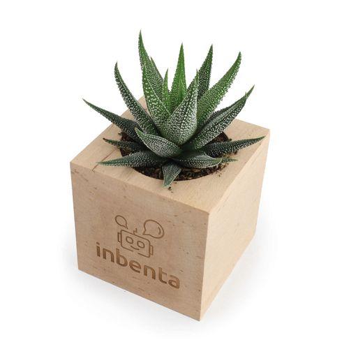 Cube Bois Arbre, Objet personnalisable, comité social économique
