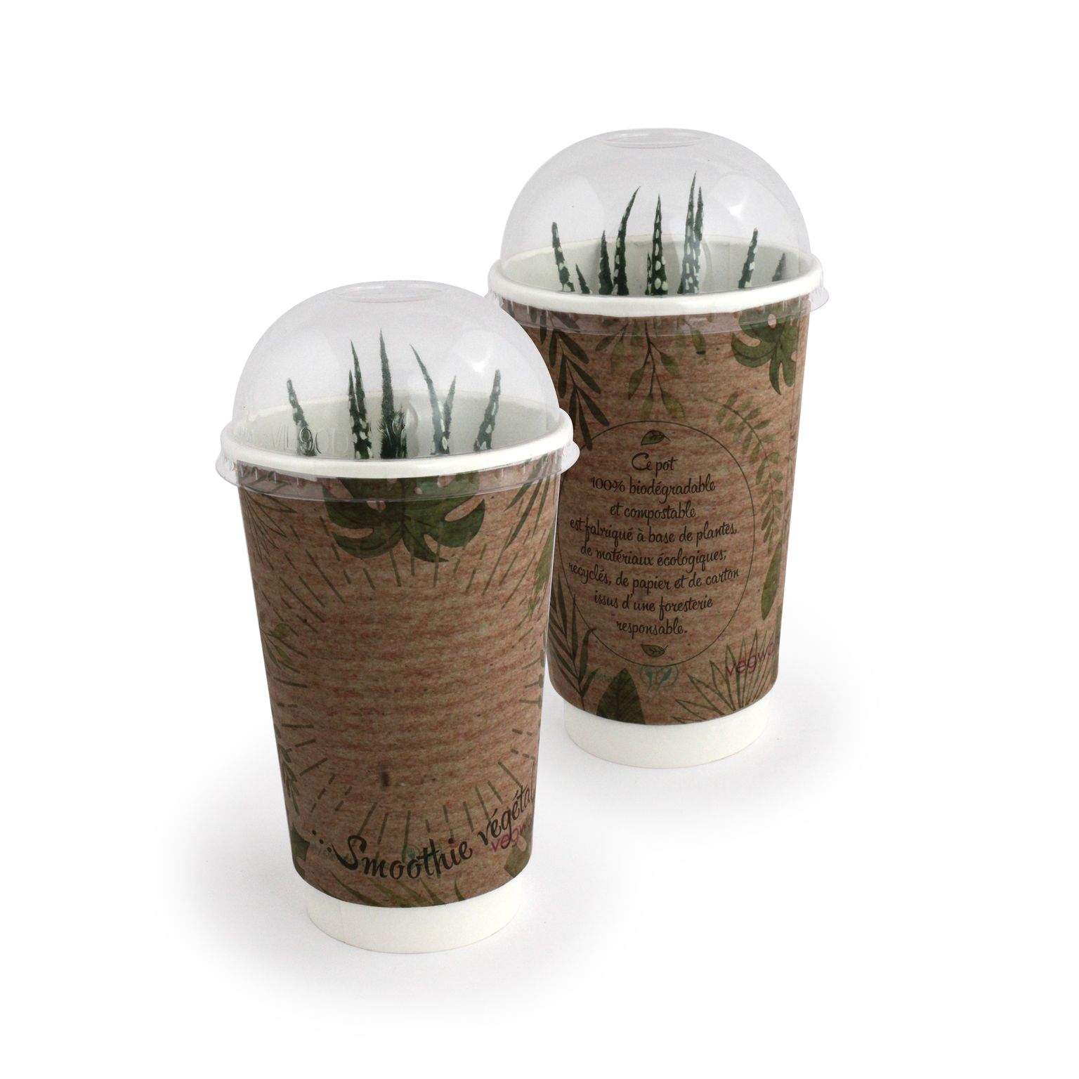 Smoothie Plante - STANDARD
