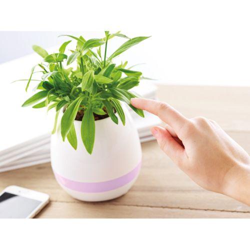 Pot de fleur haut-parleur par EG Diffusion