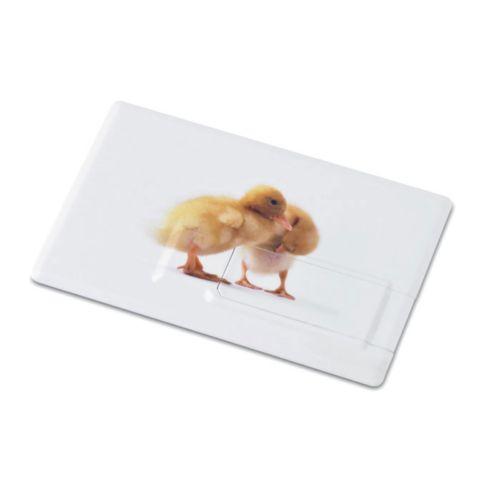 Creditcard. USB flash 4GB