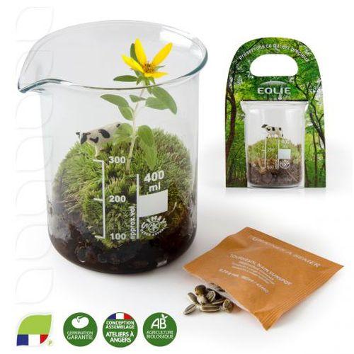 Terrarium bécher avec graines à semer