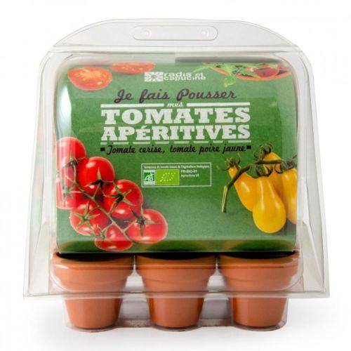 Serre 6 pots semis de tomates