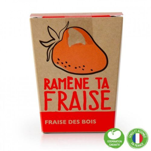 Pot Message Ramène ta fraise avec fraisier à semer - Radis et Capucine