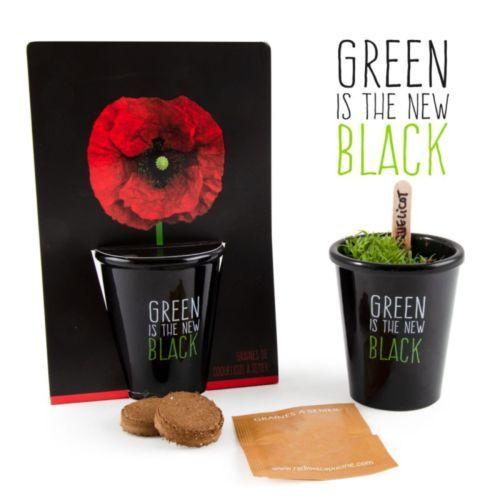 Kit de plantation black - Coquelicot