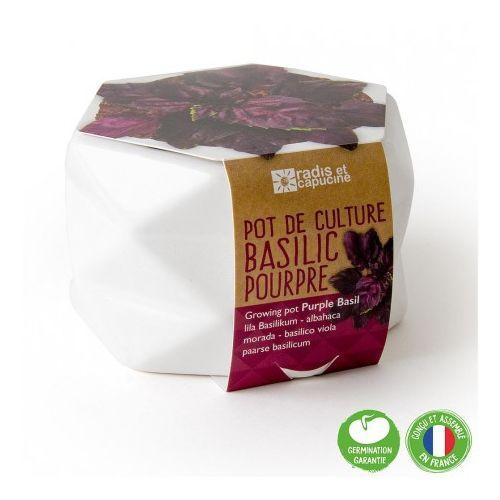 Pot origami grand modèle Basilic pourpre