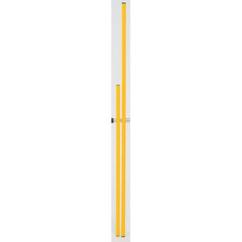 Slalom pole