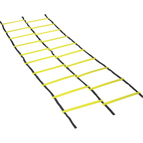 Double Agility ladder