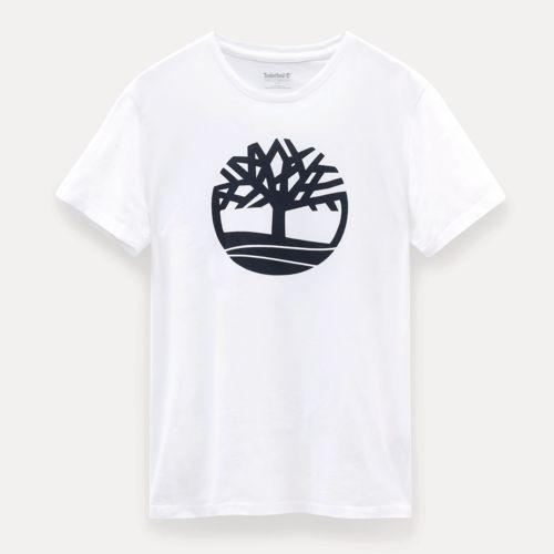 T-SHIRT BIO BRAND TREE par EG Diffusion 07210 BAIX Objets publicitaires et Cadeaux d'affaires Textile, PLV, Goodies, vêtement de travail, objets éco et durables , stylos , USB, multimédia