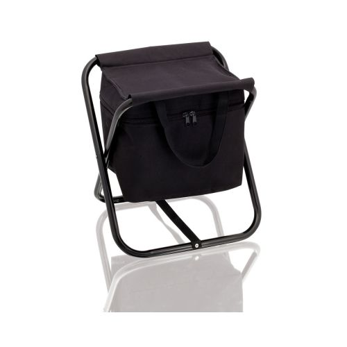 Cooler bag and chair