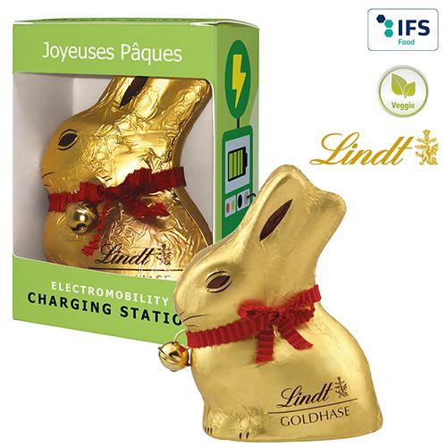 Lapin de Pâques «Lindt» boîte cadeau  personnalisé montpellier Paris Ile de France