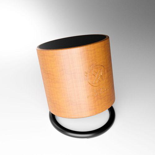 Enceinte ring éco 3W-Import