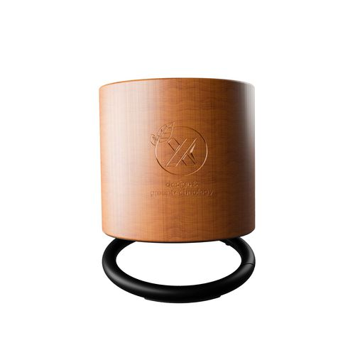 enceinte ring éco 3W-Import